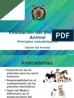Evaluacion Bienestar Animal 2015