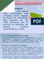 Dengue Zika Mt