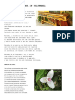 POEMA A LA MARIMBA DE GUATEMALA.docx