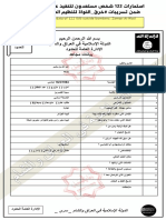Leaked ISIL files