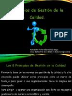 8 Principios de Calidad