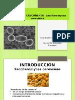 Practica de Micro Saccharomyses Cerevisea LISTA