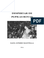 Despertar de Pupilas Rotas - Libro Media Carta