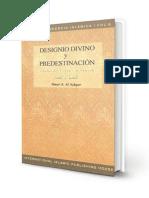 Designio Divino y Predestinación