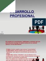 Des Profesional