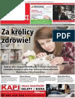 Poza Bydgoszcz nr 62