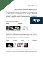 CUESTIONARIO Robotica Clinica