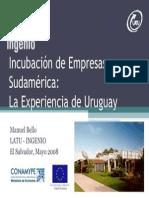 Incubaciòn de Empresas, Uruguay