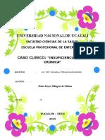 INSUFICIENCIA RENAL CRONICA.docx