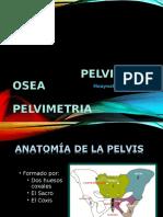 Huesos de La Pelvis Fnal