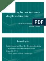 Reabilitação nos traumas do plexo braquial
