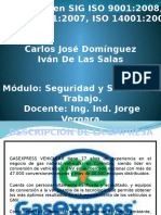 PROGRAMA DE GESTION PARA LA INTERVENCION DEL RIESGO ERGONOMICO RELACIONADO CON ALTERACIONES EN MUSCULOS, ARTICULACIONES Y TENDONES (A M A T) EN LA EMPRESA GASEXPRESS VEHICULAR S.A.S.