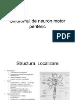 Sindromul de Neuron Motor Periferic (2)