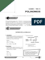 X_S10_Polinomios.pdf