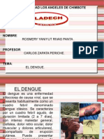 El Dengue Rosmery