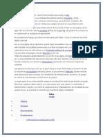 Wikinota 1.docx