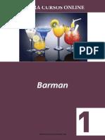 Barman 1 Gastronomia Bares - Curso Profissionalizante