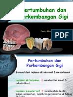 Tumbuh Kembang Gigi Part