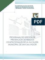 Programa de Gestion de Seguridad y Salud Ocupacional