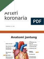 arteri korokararina