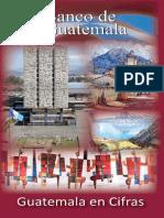 Guatemala en Cifras 2010