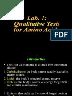 Lab 1 Qualitative Tests 2-2-2014