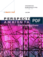 PERSPECTIVA AMBIENTAL - Electromagnetismo