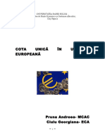 53962775 Cota Unica in Tarile Europene