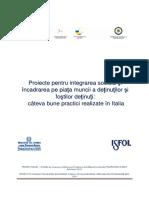 Proiecte Pt Integrarea Detinutilor