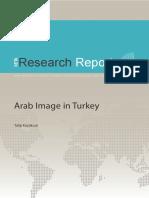 Talip Kucukcan_Arab Image in Turkey [2010]