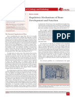 Regulatory Mechanisms of Bone Development and Function