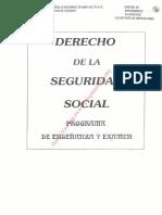 Programa Seguridad Social