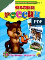 Animale salbatice - ilustratii