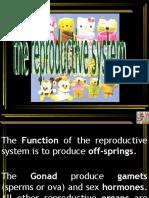 09 - Reproduksi 1
