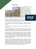 La contaminación del medio ambiente.docx