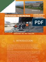 DEFENSA RIBERERA-CAVIONES PARA TALUDES