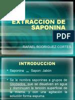 Saponina Expo