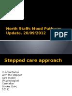 North Staffs Mood Pathway Update