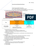 HD1 Pathology Notes