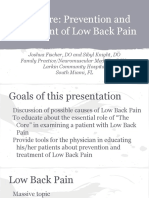 omt_the_core__prevention_and_treatment_of_low_back_pain.pdf