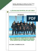 PROYECTO SEGURIDAD CIUDADANA LAS LOMAS.doc