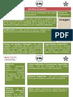 Modelo Ficha de Proyectos