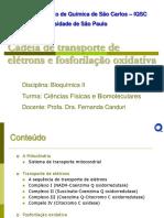 CTEefosforilacaooxidativa08102010