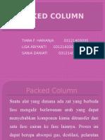 Packed Column