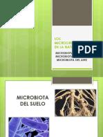 Microbiota suelo%2c agua y aire.pdf