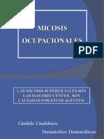 Micosis Ocupacional 22-02-2015