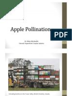 apple_pollination-hossein_yeganehrad.pdf