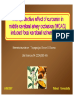 50_JC_Neuroprotective Effect of Curcumin in MCA Occlusion in Rats