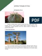 5 Tumbuhan Terlangka di Dunia.docx