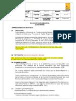 INVENTARIO AMBIENTAL SALAVERRY